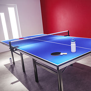 3D visualisation of a table tennis room